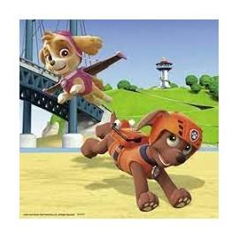 Disfraz arabe mujer rosa